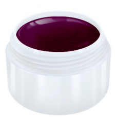 Colour Gel NEW! - Bordeaux Violet
